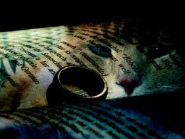 Story of the Cat and the Ring by Himmelmeere