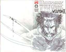 Wolverine 100 sketch cover by sjsegovia