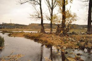 just some autumn landscapes by AngelinaK