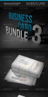Business Cards Bundle 3 by artnook