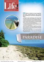 strip of paradise by sercor