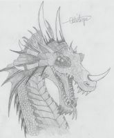 Dragon by and1skipp