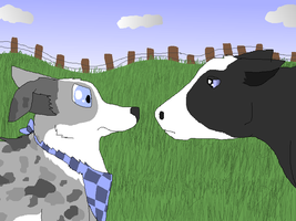 Yukon Staring Down a Cow by Northernhearts