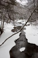 Winter Stream by Salamander-Stock