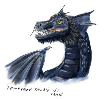 Temeraire study by NetRaptor
