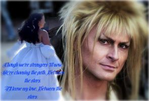 Labyrinth: Between the stars by LabyrinthLadyLover