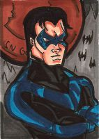 NightWing PSC by RWhitney75