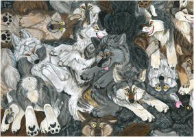 Just wolves by Vlcek