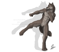 Shadowboxing - Commission by KeksWolf