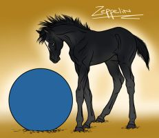 Zeppelin by sealle