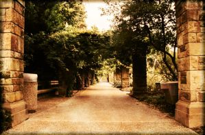 Down the Pathway by seripham