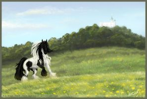 Horse and castle by Astrocat