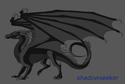Shadowseeker The Shadowwing  by Queen-Apocalypse