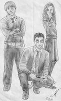 Harry Potter trio 2 by talita-rj