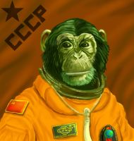 Cosmonaut by The-Mirrorball-Man