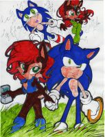 Sonic and Sally- Hero by dragonheart07