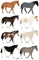 Equine Designs [Point Sale/OPEN] by Catzei