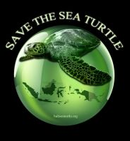 Save the sea turtle by DyanaWang