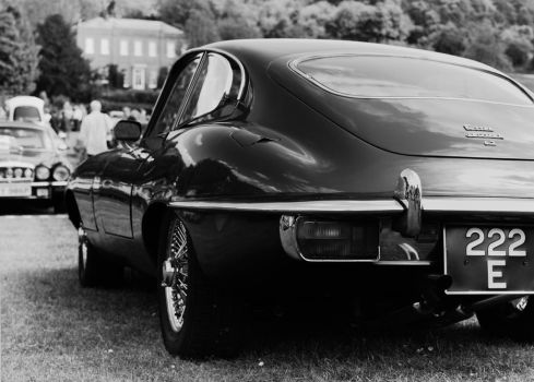 E-Type, rear, bw by FurLined