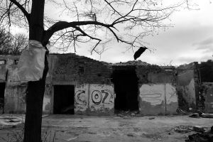 Abandoned place II by Petko