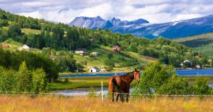 A part of Norway by misa2525