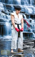 Street Fighter - Ryu - Meditation by JilliD