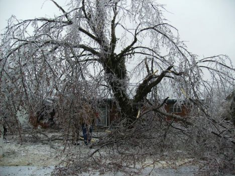 Ice Storm by flichin