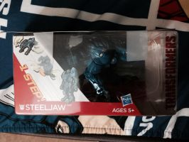 Steeljaw Gift by Wolfchick36