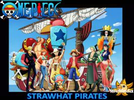 Strawhat Pirates by 7Melinda7