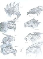 Dragon Heads by Joecool190