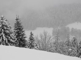 Snowy Massif of Grande Charteuse in the fog by A1Z2E3R