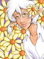 field of daisies by manic-pixie