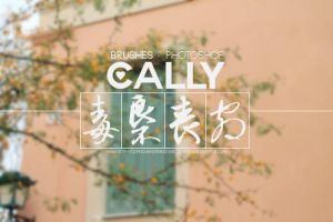 Cally - .Abr by Ihavethedreamersdise