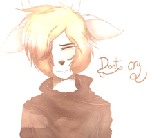 Don't cry by Cervides