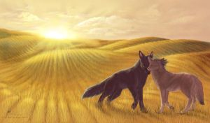 Fields of Gold by FireMaster13