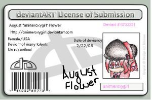 New license by animeroxygirl