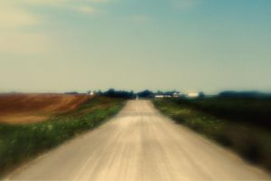 Rural Road by pubculture