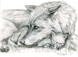 Wolf and Pup by silvercrossfox