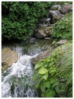 Waterfall I by eosthilas