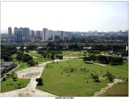 Pinheiros from the Tower by KDEWolf