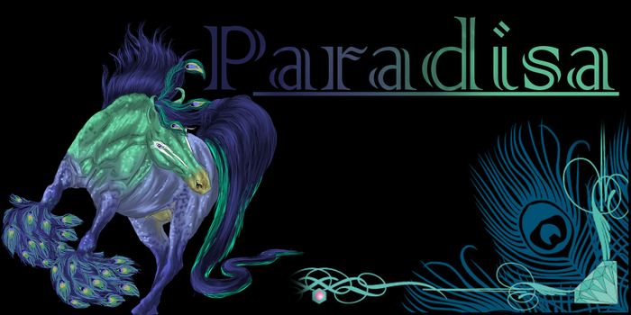 ParadisaEquine Banner by LiaLithiumTM