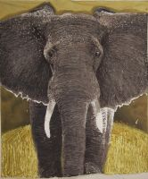Elephant batik by Hank26