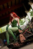 The Poison Ivy III by blue-potions