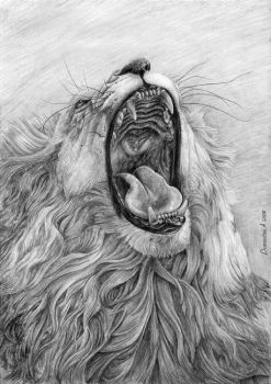 Lion's Mouth by CalciteMink1610