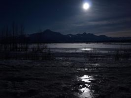 Matanuska River and Giant Moon by Line-of-Birds