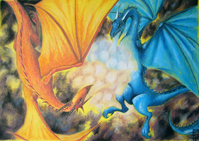 Fighting dragons by excaite
