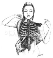 Rib Cage Study - Scanned by stitchdollz