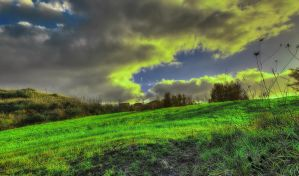 Green sunset - HDR by yoctox