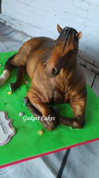 Horse Cake by gadgetcakes