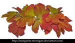 autumn wreath 1 by margarita-morrigan
